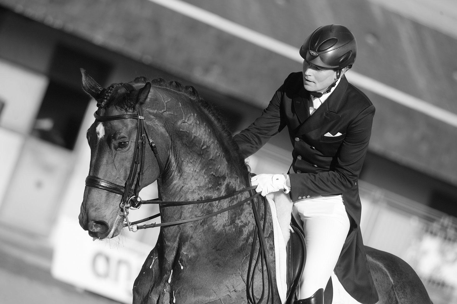 Ruoste Dressage Henri Horse